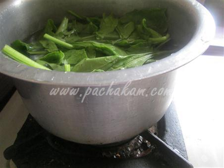 Step 1 Paalak Paneer Recipe